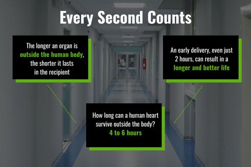 Human Organ Stats Graphic